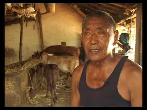 50 YEARS IN EXILE : 02 Mundgod Tibetan Settlement
