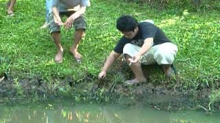 Mancing Belut di Taman Langsat