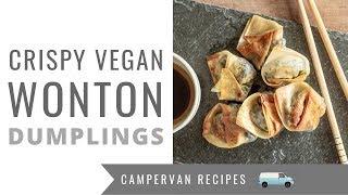 Crispy Vegan Wontons Dumplings - One Pot Campervan Cooking Recipe!