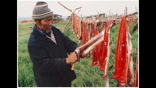 Вяленая Рыба по Сибирски. Юкола из Щуки. Как Засолить Рыбу