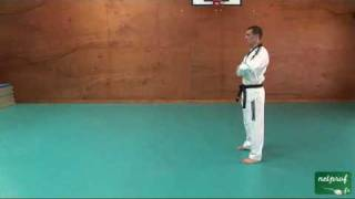 Taekwondo Poomse 1