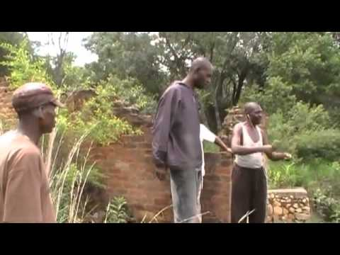 Ostrich, Crocodile and Tobbaco Farm  in Beatrice, Zimbabwe