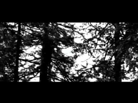 Twilight: Catherine Hardwicke's Bella's Lullaby Remix Music Video