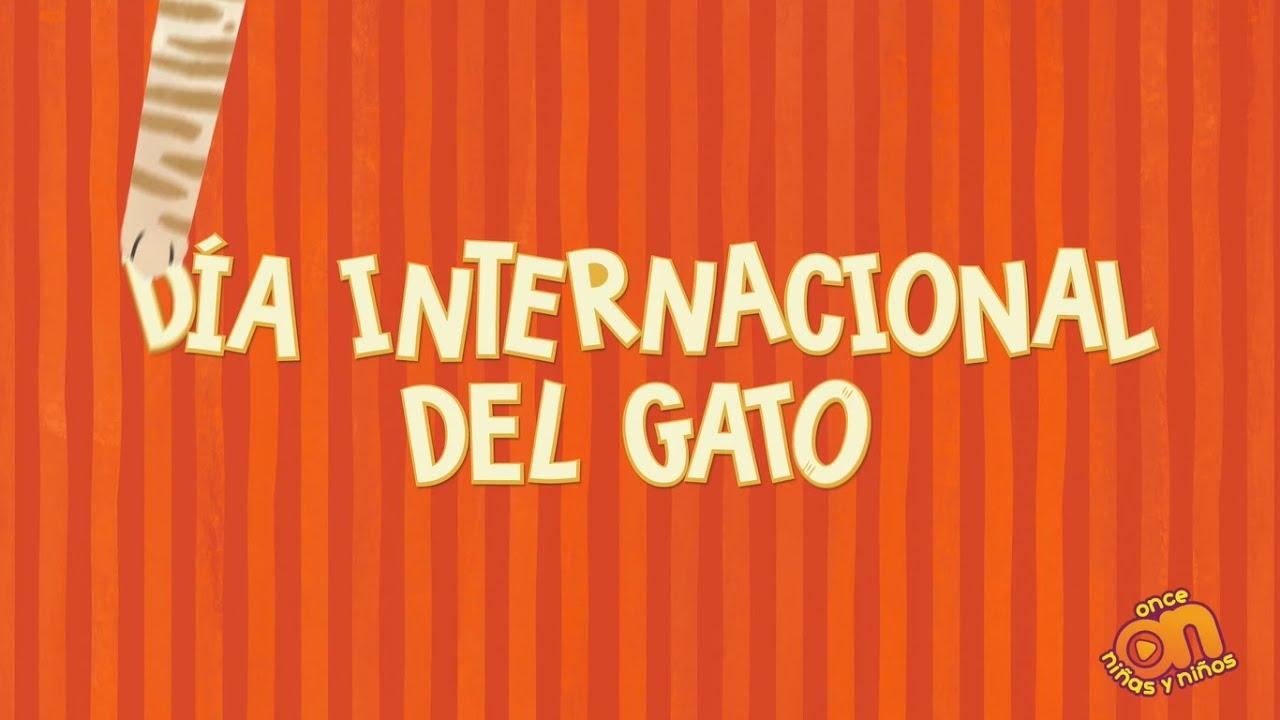 Acuérdate de... Día Internacional del Gato 🐱