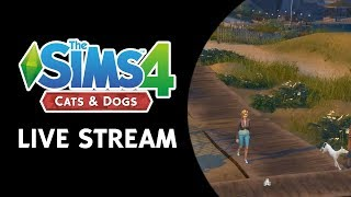 The Sims 4 Cats & Dogs World/Build/Buy Live Stream (November 2nd, 2017)