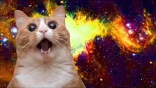 Borgore & Sikdope - Space Kitten Invasion (HD)