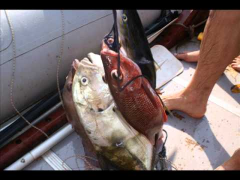 West Africa Sport fishing