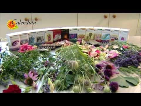 Calendula Pharma Co. Kft - Ayurvedic Food Supplements