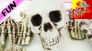 HORROR PRANK SET! 超级 可爱 吓人 万圣节 恐怖 整蛊 仿真 骷髅头 骨架 白骨 人骨 玩具组 套装 展示