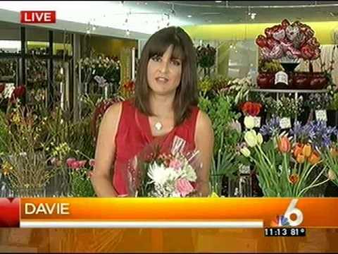 Field of Flowers- WTVJ NBC6