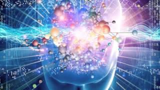 Applying the Neuroscience of Leadership
