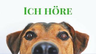 Hundetraining Online - Tipps und Empfehlung - Teil 1