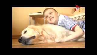 Собака вылечила ребенка от аутизма