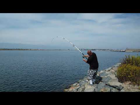 Fishing The Navel Base Seal Beach.