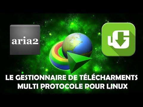 ARIA2 (UGET) LE GESTIONNAIRE DE TÉLÉCHARMENT MULTI PROCOLE POUR LINUX
