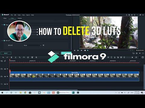 How to REMOVE or DELETE LUTs in Filmora 9