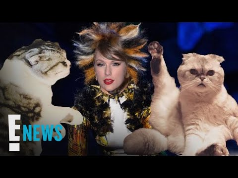 """5 Skills Taylor Swift Can Learn From Her Cats for """"Cats"""" Movie 