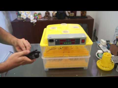 Automatic Breeding Machine 112 Egg Incubator