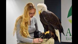 Bald Eagle Pedicure!