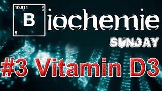 Biochemie #3 - Vitamin D3 & Sauerstoff. Sonne als natürlicher Testosteron Boost für den Muskelaufbau