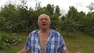 Vikendica nad Kostajnicom(, 2016-07-04T10:58:05.000Z)