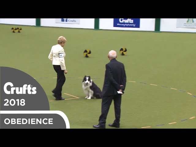 Obedience - Dog Championship - Part 20 | Crufts 2018
