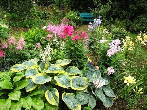 видео: Создаем цветник в саду
