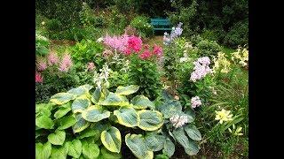 Создаем цветник в саду