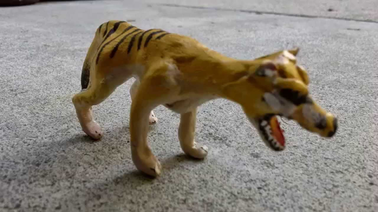 Clay Thylacine Figure Tasmanian Tiger Youtube