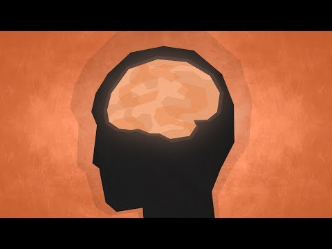 Top 10 Facts  Psychology