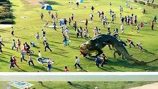 變異的魚上岸咬人了!韓國災難科幻大片:《漢江怪物》