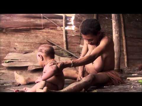 EBS 다큐프라임 - EBS Docuprime_아시아의 열대 1부 나무인간, 오랑뽀혼_#002