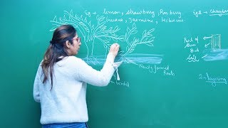 How do Organisms Reproduce? | Biology | CBSE Class 10th Video Lecture | Misostudy
