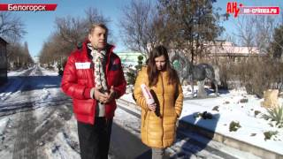 Зимовка в парке львов Тайган финальная версия(, 2015-01-15T12:38:58.000Z)