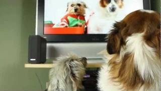 Jingle Bells Happy Holidays Message (dogs Barking At Themselves)