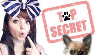 CAR C'EST NOTRE PROJET SECRET !!! 🐶❤