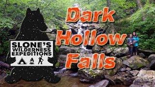 DARK HOLLOW FALLS (waterfalls & bears!) - Shenandoah National Park