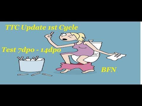 TTc Update 1st Cycle 7dpo- 14dpo tests/ BFN