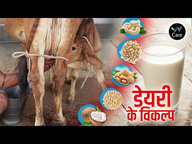 डेयरी के विकल्प। Dairy Alternatives