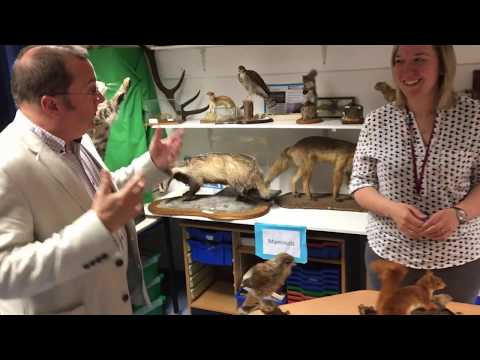 Doors Open Day Pre-Tour - The University of Aberdeen Zoology Museum & Biodiscovery Centre