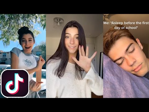 Good Morning, Today Is a Wonderful Day   TikTok Compilation