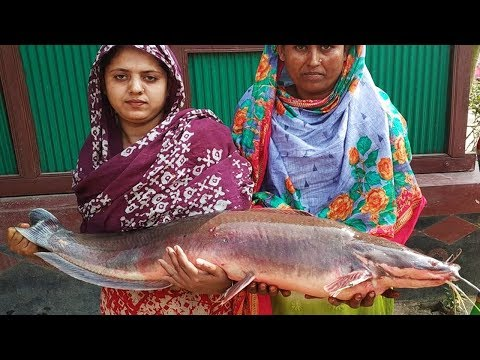 Big Catfish ( Magur ) Fish Curry Cooking For Whole Village Peoples - 10 KG Catfish Cutting