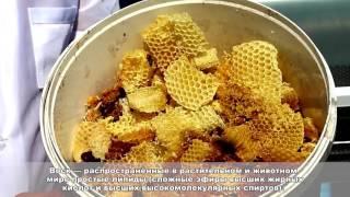 Обучение пчеловодству -  урок 5 .Продукты  Пчеловодства
