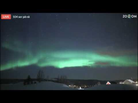 Aurora Borealis live cam from Norway / Senja, 01.03.2017. 4