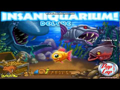 How To Download Insaniquarium Deluxe For Free Full Version For Pc 2019