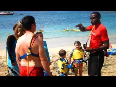 Sea Adventures Team