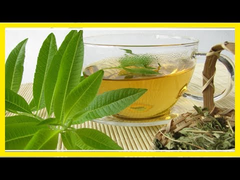 Relax with a Cup of Lemon Verbena Tea (+5 Health Benefits!)