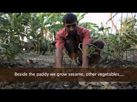 Earth Focus Episode 37 - Exposed: The Ugly Side of Food Production