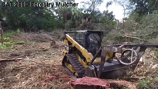 CAT 289D Forestry Mulcher,  Making Money Land Clearing