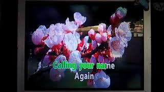 Calling Your Name Again - Karaoke Richard Carpenter